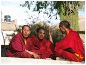 slides/95193215.JPG Buddha Diestel Dirk festival Fotograf geo:lat=34.16432162 geo:lon=77.58448362 geotagged India Jammu and Kashmir Leh Mönch monk Tempel temple Temple center of Leh 95193215