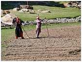 slides/95317076.jpg Himalaya Indien Kloster Ladakh Motorrad Mönch Tanglangla Tempel Tso Moriri Tso kar 95317076